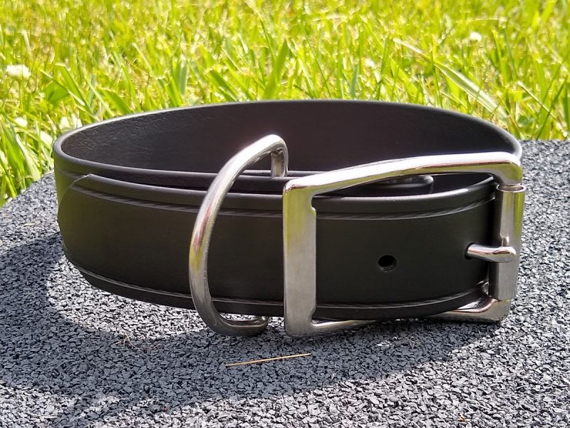 The Super Collar American Made Indestructible Dog Collars USA Unbreakable Big Dogs Strong Super Belt for your Pet Lifetime Warrant Stainless Steel D Rings Hardware